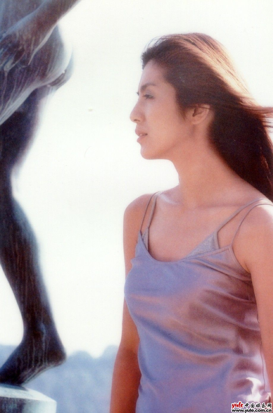 杨采妮图片