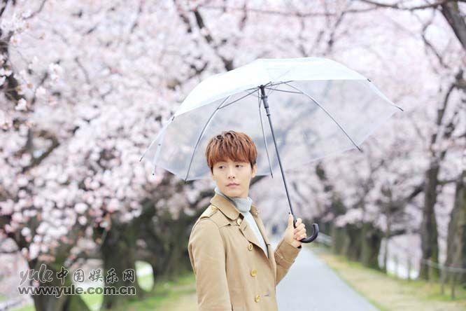 撑伞的少年