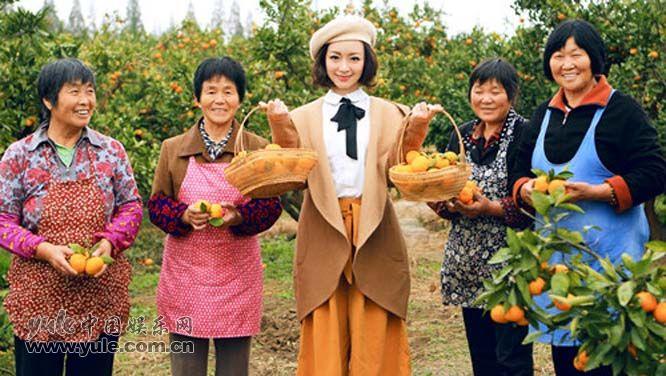 许榕真采摘鲜橘