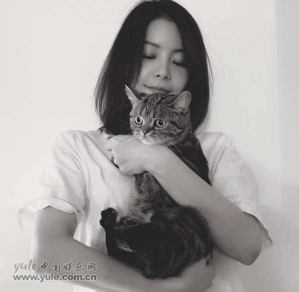 王玥兮  猫咪
